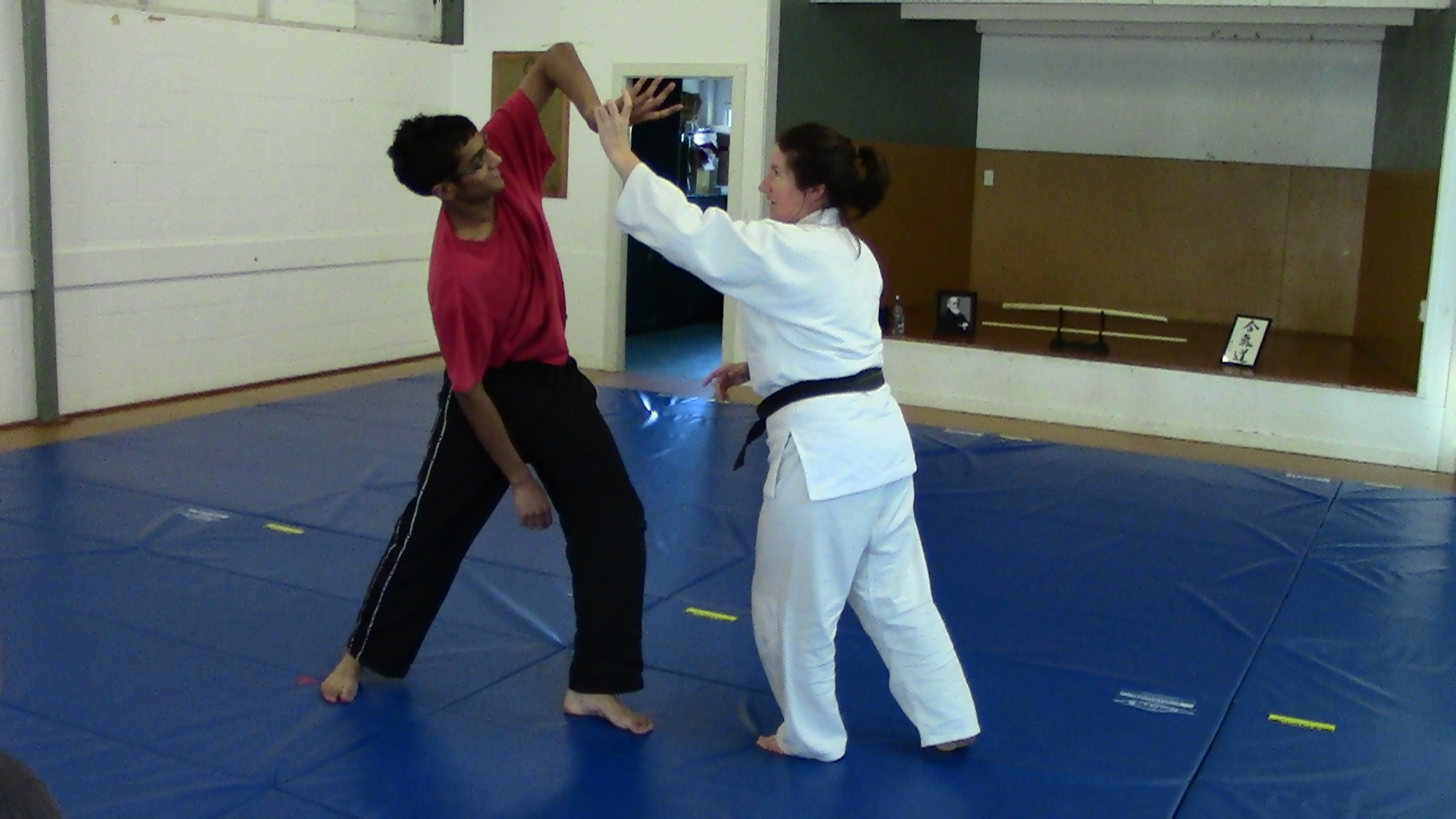 Lyn Sensei demonstrating at a beginners course
